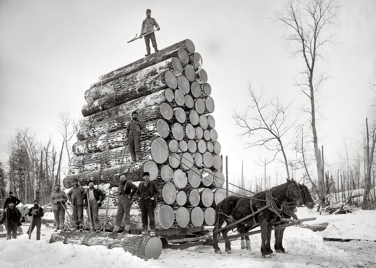 Перед рекордным стартом!: Утехи американских лесорубов (1890-е годы)