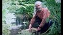 Иосич жизнь таёжного геолога