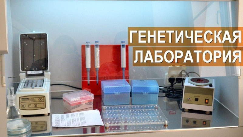 Лаборатория молекулярно-генетической диагностики и ПЦР анализа