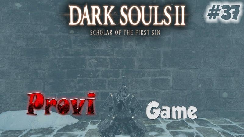 Dark Souls 2 Scholar Of The First Sin ► Проблемный питомиц Ава ►37