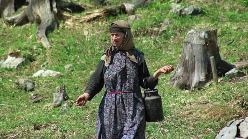 Алтай. Хранители Телецкого озера. Altai.Teletskoye lake © Ivan Usanov