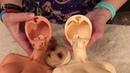 Feeple65 Legit And Recast Comparison WARNING Doll Nudity