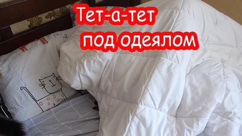 VLOG Вечно мерзнущий человек. Тет-а-тет под одеялом.