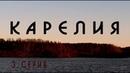 Карелия || дикая природа, лось, Белые мосты