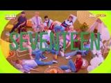 [180718] Show Champion Next Week Comeback: Seventeen (세븐틴)