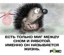 Дмитрий Поляченко фото #15