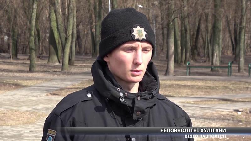 Неповнолітні хулігани погрожуючи ножем обібрали та побили 20 річного молодика