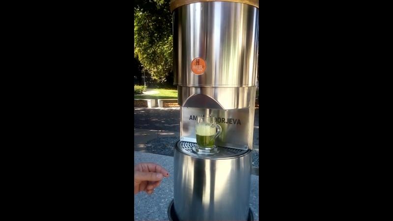 Žalec Slovenija fontana piva