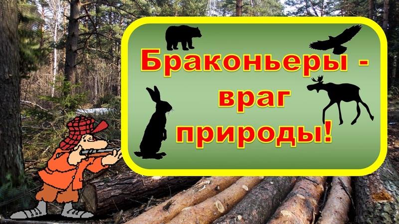 Наталья Хазиева (г. Прокопьевск) – Наталья Хазиева «Защитим леса Кузбасса»