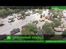 Мародеры и аллигаторы на улицах: в затопленных ураганом «Флоренс» городах воцарился хаос