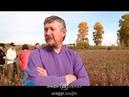Староверы из Южной Америки присматриваются к амурской земле