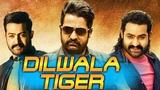 Dilwala Tiger (2018) Telugu Film Dubbed Into Hindi Full Movie   Jr.NTR, Trisha Krishnan