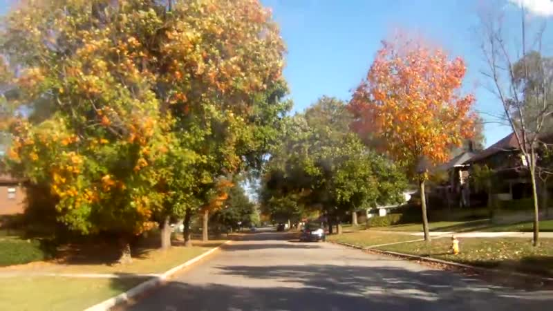 Autumn in University of Notre Dame area