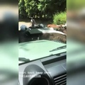 Orlandoland Orlando Bloom on Instagram Видео Кэти Перри (@katyperry)