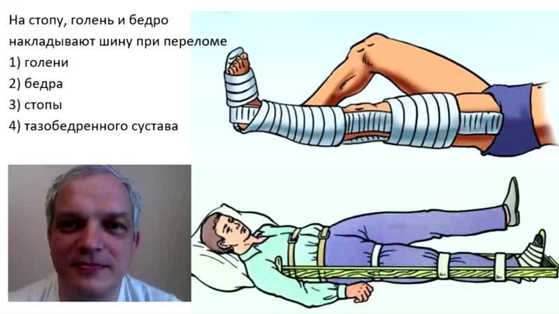 [БИО-ФАК готовит к ЕГЭ] На стопу, голень и бедро накладывают шину при переломе