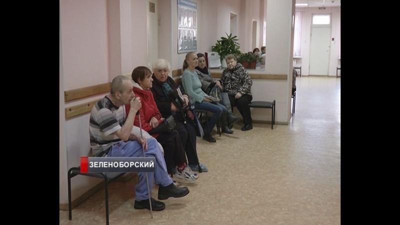 Как жители Зеленоборского борются за доступную медицину? И что ждет поселковую больницу?