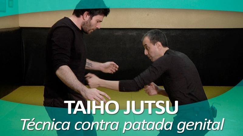 TAIHO JUTSU 5 (sistema japonés defensa personal policial)   Técnica contra patada zona genital