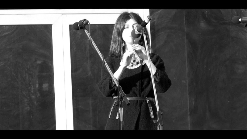 MGOSANI - ქართული Картули Kartuli (live fragment)
