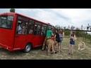 Незабываемое Сафари для Саши Филя во всей Красе Тайган .Крым.