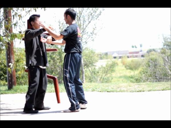 Wing Chun 咏春功夫掌击 Wooden Dummy Application