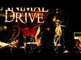 Animal Drive - Goddamn Marathon (2018) (Progressive Metal)