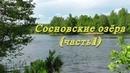 Озёра сосновского р-на (ч.1) - ЧЕРЕПАХА И ПОДБОРНОЕ