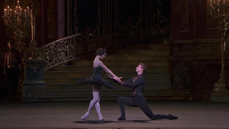 ЛЕБЕДИНОЕ ОЗЕРО балет в кинотеатрах.«Па-де-де Чёрного лебедя» из 3 акта.Королевс