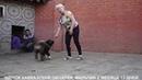Продается щенок Кавказской овчарки, мальчик. r-risk 79262205603 Ягодкина Татьяна