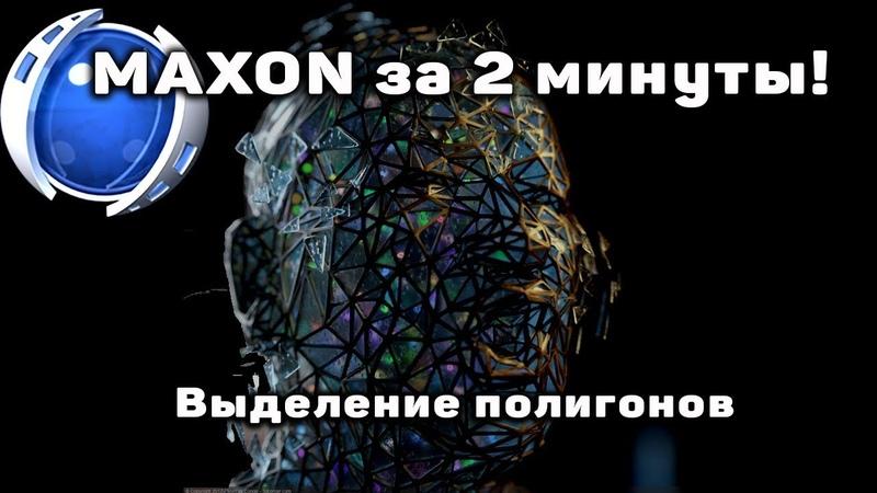Совет 5 от MAXON Выделение полигонов Владимир Суртаев