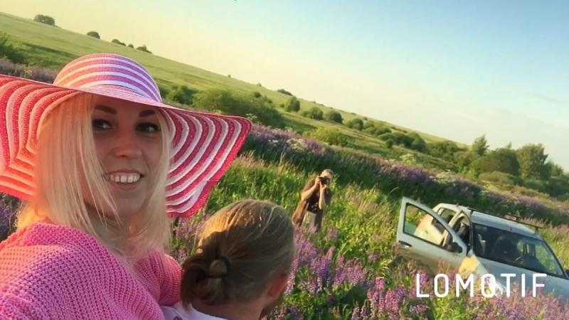 Чета Борода (лето 2018, поля фиолетовых цветов)