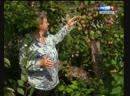 Яблочный спас Аркаим
