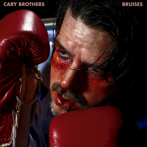 Cary Brothers альбом Bruises