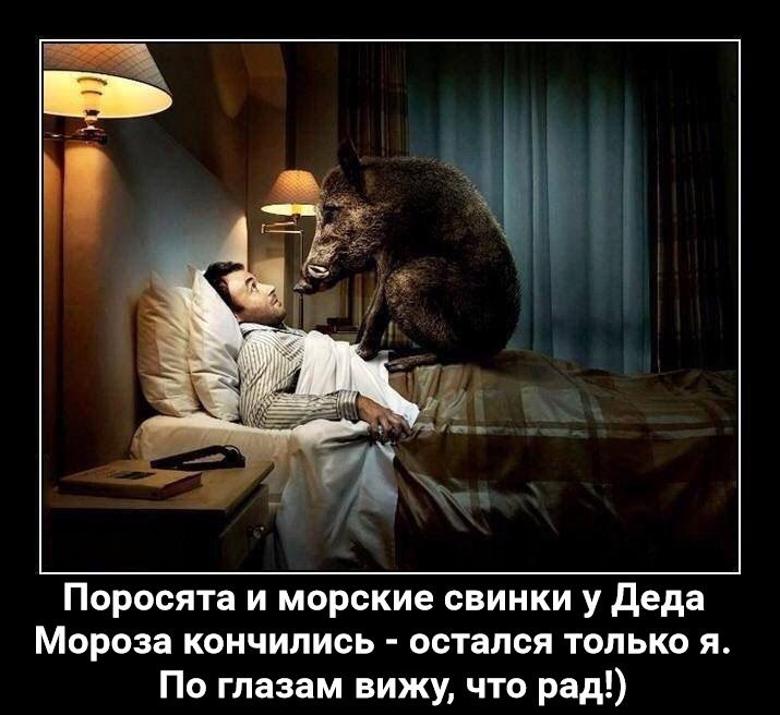 https://pp.userapi.com/c849224/v849224718/f50f1/6MiZJyTufNE.jpg