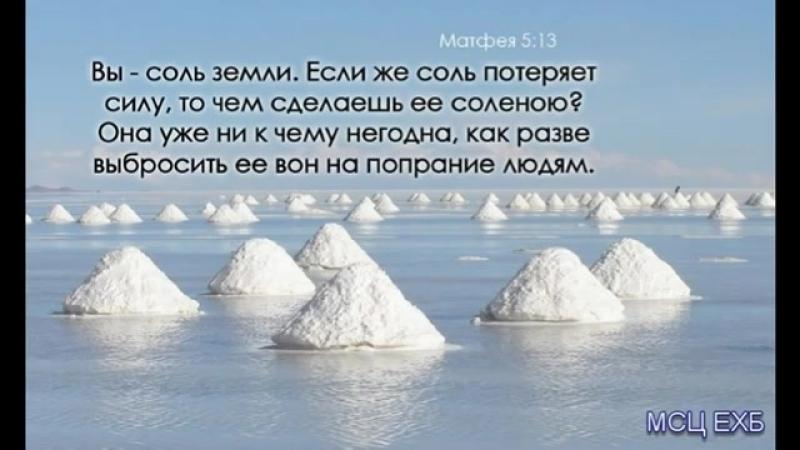 Вы соль земли Самарин Д