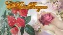 🎵💋🎵Очень красивое поздравление с Днем Рождения женщине🎵💋🎵