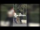 TAKE COVER 176 Лучшие уличные драки FIRSOV - я без тебя не смогу. vk/takecovers