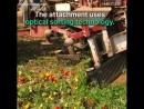 Это чудо какое то😃 Технология оптической сортировки для разделения красных и зеленых помидоров 🍅