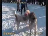 Акпан дядя Рома-Арлан г.Аягоз 2 тур ВКО 3 раунд