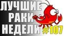 ЛРН выпуск №107 КОЛЛЕКТИВНЫЙ РАЗУМ и СВЕТЛЯК НЕВИДИМКА Лучшие Раки Недели