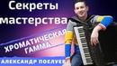 Как быстро научиться играть на аккордеоне Хроматическую гамму? СЕКРЕТЫ МАСТЕРСТВА 1