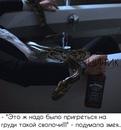 Полина Богомолова фото #45