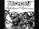 Necrony - Acute Pyencephalus And Cerebral Decomposure