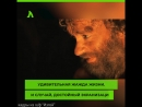 Современный Робинзон Крузо | АКУЛА