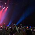 """Марина Ушенина on Instagram: """"Необыкновенная атмосфера на этом концерте. Дэвида переполняют чувства, публика неистовствует, охает, восхищается. Он ..."""