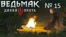 Прохождение The Witcher 3 Wild Hunt № 15 Заказ Лешачиха