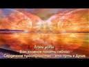 Десятая встреча с Солнечными цивилизациями.