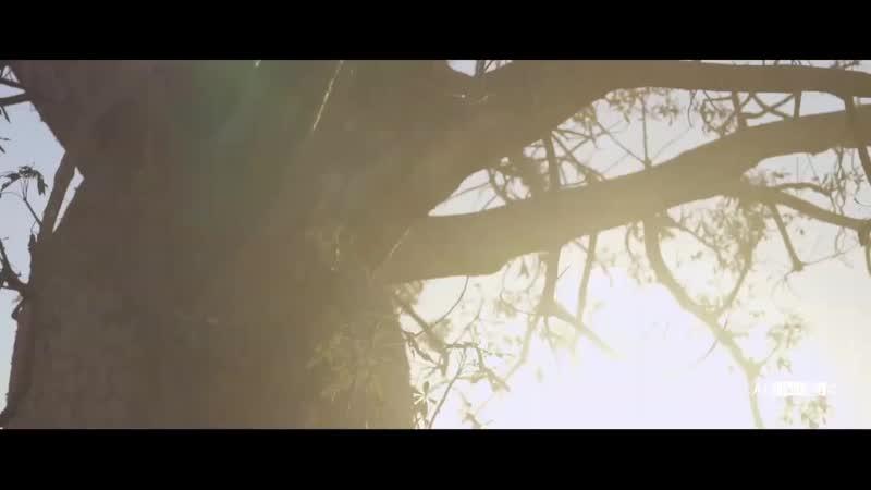 Hakan Akkus feat. Ece Barak - Try Again (The Distance Igi Remix)