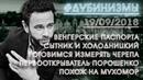 дубинизмы субъективные итоги 19 сентября