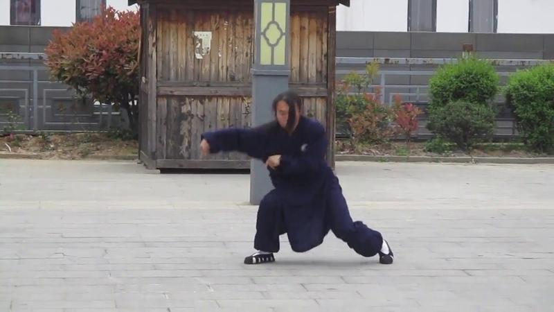 Wudang Kung Fu Mantis Dragon and Snake Forms