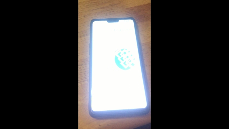 WebMoney Bug OnePlus 6